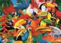 500 эл. - Грим Стивенсон. Цветные птички / MGL / Trefl 0