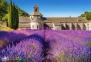 1000 ел. - Лавандове поле в Провансі, Франція / Castorland 0