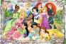260 эл. - Встреча Принцесс / Disney Princess / Trefl 0
