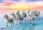 500 эл. - Белые лошади в галопе / Trefl 0
