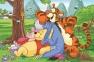 54 ел. Міні - Вінні Пух. Літо у лісі / Disney Winnie the Pooh / Trefl 2