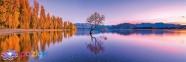 1000 эл. Panorama High Quality Collection - Одинокое дерево озера Ванака, Новая Зеландия / Clementoni 0