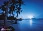 500 ел. High Quality Collection - Тропічний острів / Clementoni 0