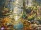 2000 ел. - Осінній ліс / Castorland 0
