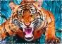 600 эл. Crazy Shapes - Один на один з тигром / 500px / Trefl 1