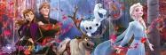 1000 эл. Панорама - Холодное сердце-2 / Disney Frozen 2 / Clementoni 0