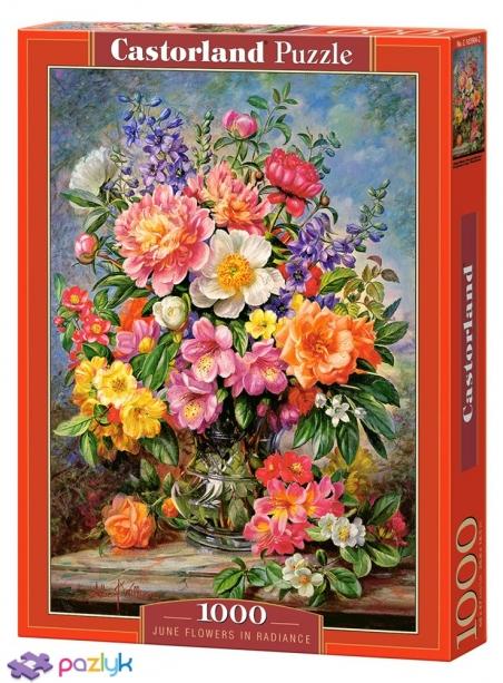 1000 ел. - Квіти. Натюрморт / Castorland