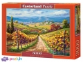 3000 ел. - Виноградна плантація / Castorland