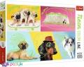 1000 ел. Neon Color Line - Відпадні собаки / Trefl